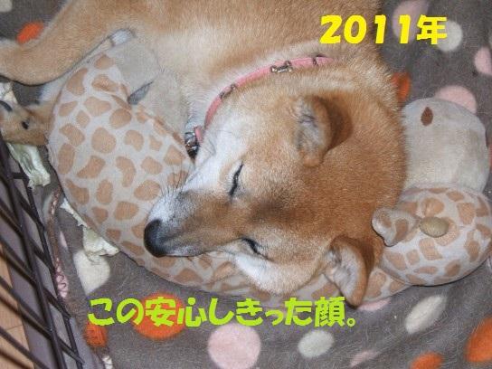 20140125-008.jpg