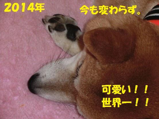 20140125-011.jpg