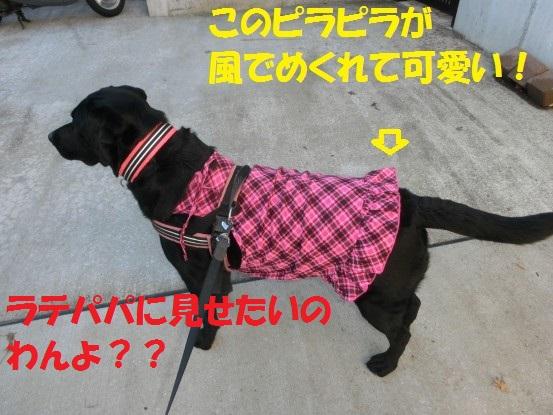 20140131-09.jpg