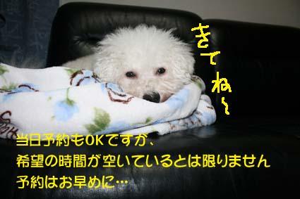 0001_20130913101420a36.jpg
