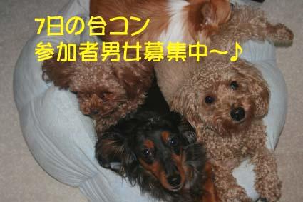 000_20131203063511a76.jpg
