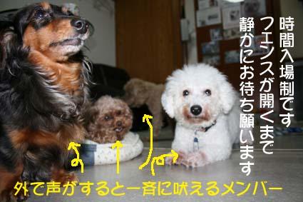 01_20130705185825.jpg