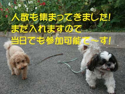 01_20131114143401107.jpg