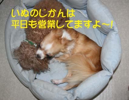 01_201311291837433da.jpg