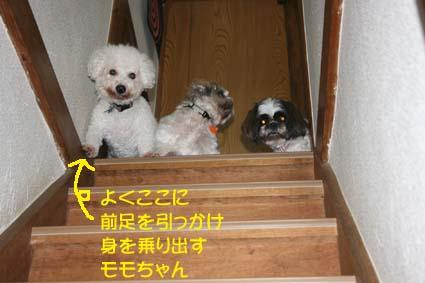 03_20130711132229.jpg