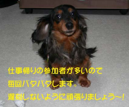 11_20130801160336619.jpg