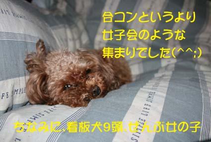 1_20130628141234.jpg