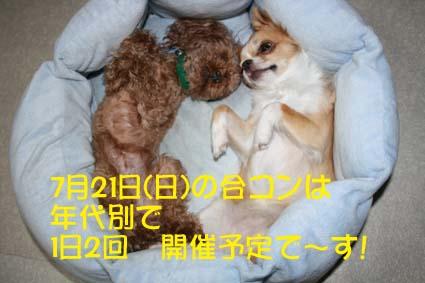 1_20130716174730.jpg