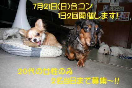 1_20130720103253.jpg