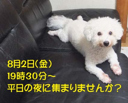 1_20130726140334.jpg