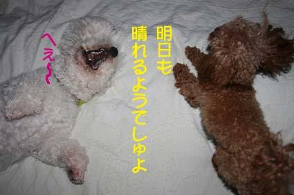 2_20130608201640.jpg