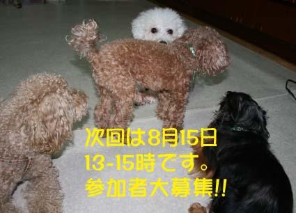 2_201308081746417e8.jpg