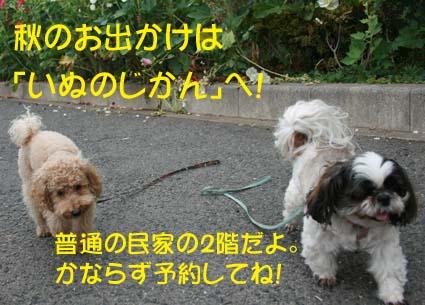 2_20130927160044e28.jpg