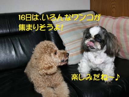 IMG_5283.jpg