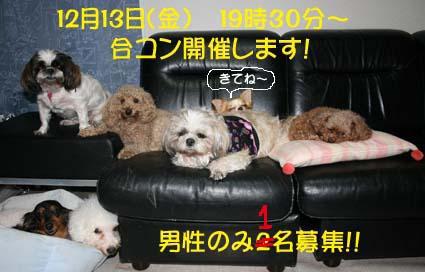 IMG_8875.jpg