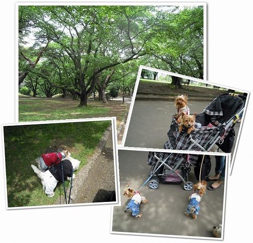 稲荷山公園