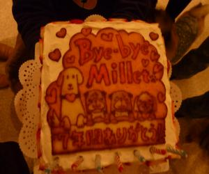 ミレットケーキ