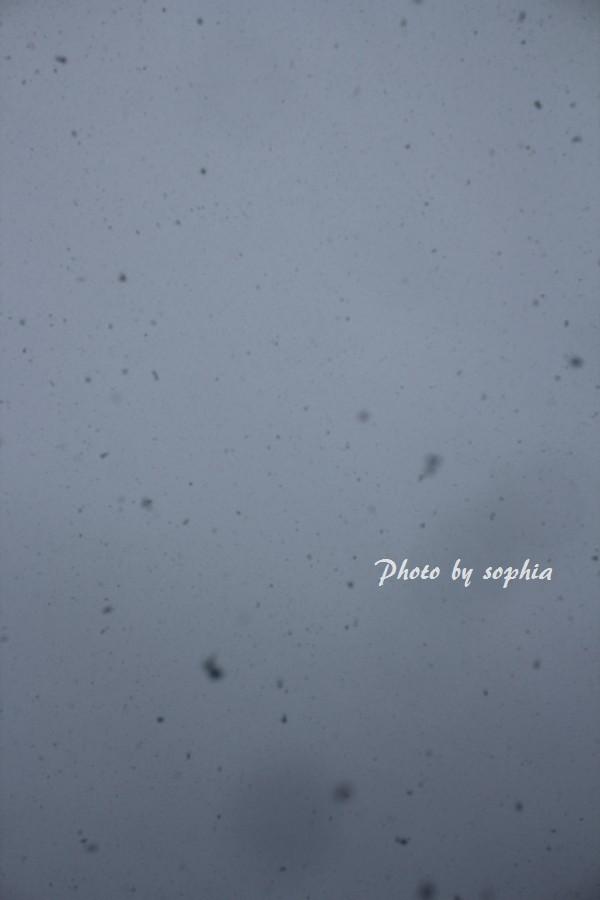 2013年12月12日雪