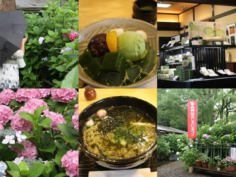 page わんこ抜き京都撮影オフ会