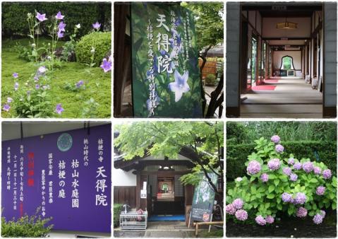page 京都 東福寺2