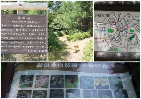 page 日和 御泉水自然園2