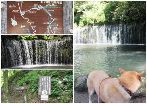 page 日和 白糸の滝2