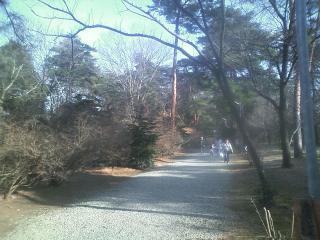 龍泉寺とか (9)