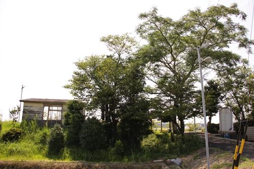 細谷駅全景その2