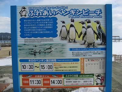ふれあいペンギンビーチの看板