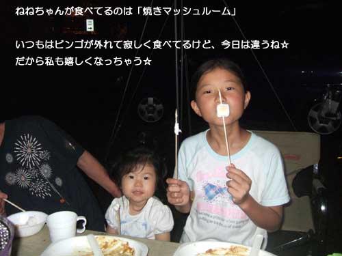 11_11_8.jpg