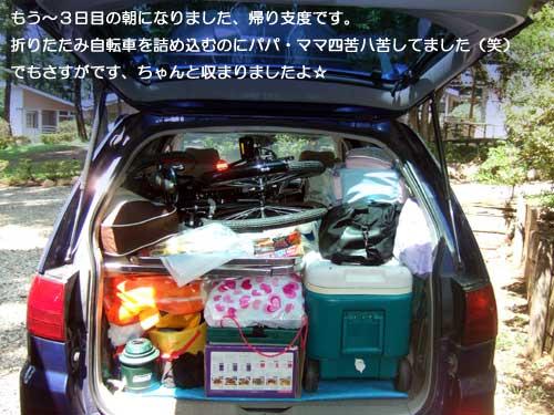 12_11_8.jpg