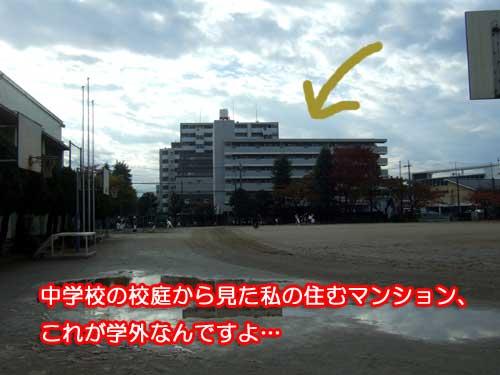 13_11_20.jpg