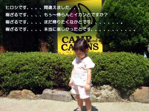 13_11_8.jpg