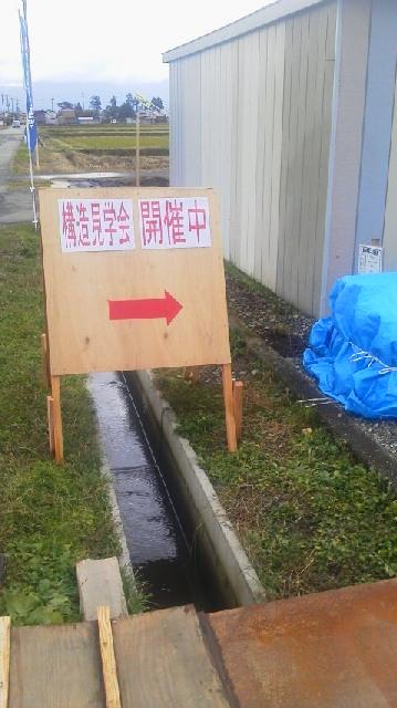 2011112011010000.jpg