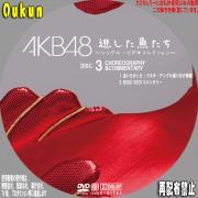 AKB48「逃した魚たち」⑥