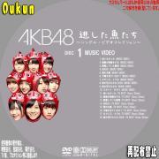 AKB48「逃した魚たち」④