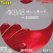 AKB48「逃した魚たち」③