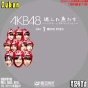 AKB48「逃した魚たち」①