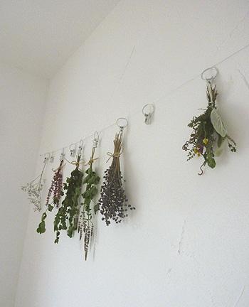 吊るしハーブ