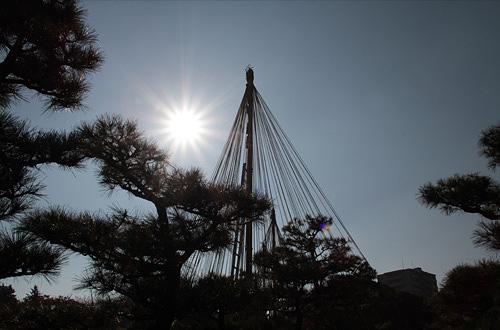 20101121koyo_007.jpg