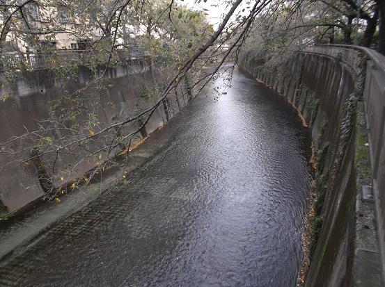 石神井2595