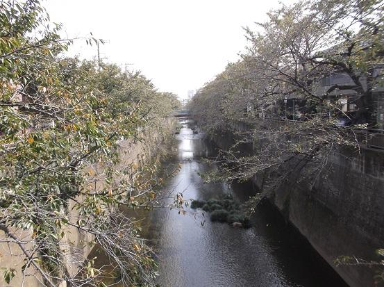 石神井2632
