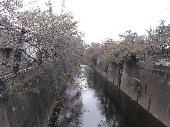 石神井2683