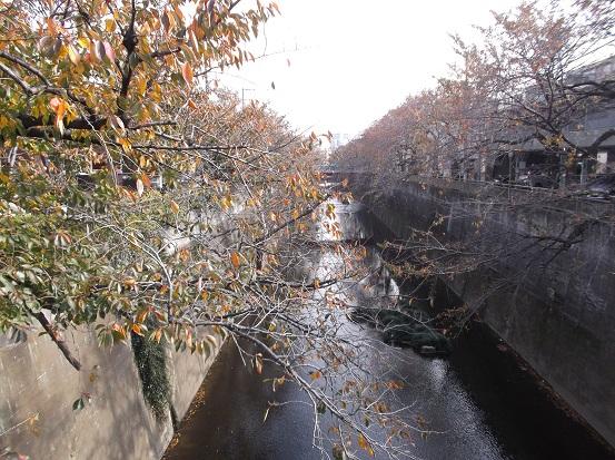石神井2710