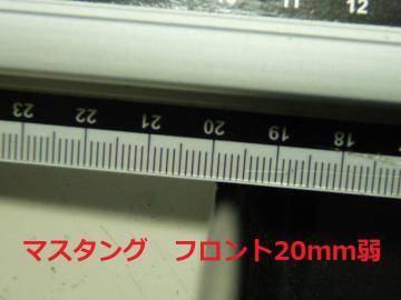 sP1380986.jpg