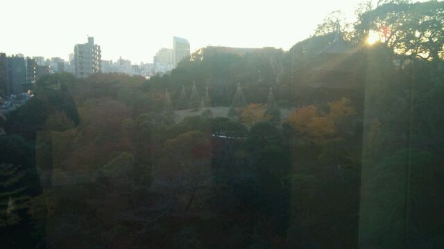 mejiro2.jpg