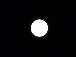 ほぼ満月P1050301