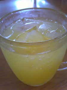 オレンジソーダブログ