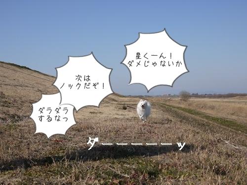 P1110108.jpg