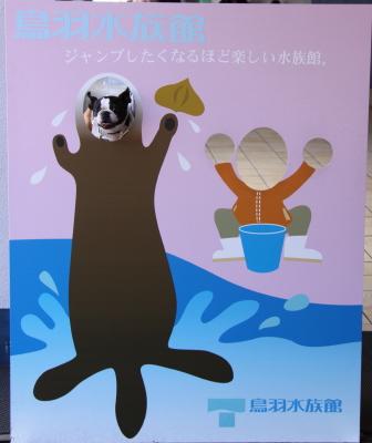 真珠島と牡蠣